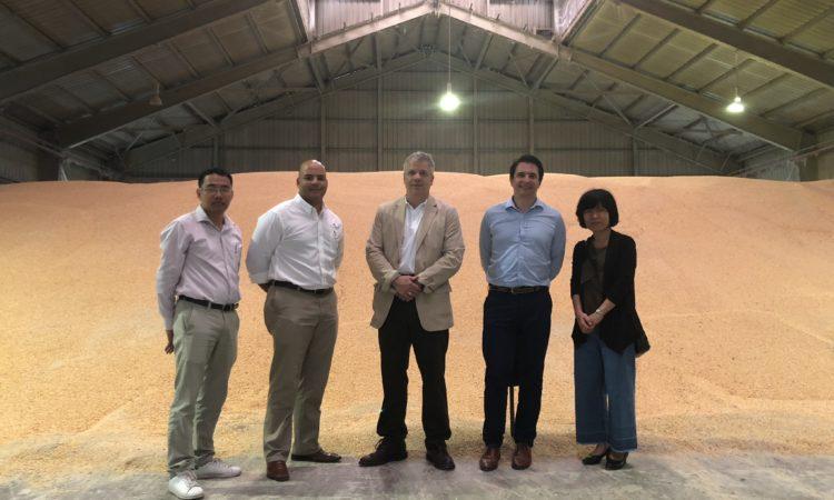 Bộ Nông nghiệp Hoa Kỳ (USDA) và Hội đồng Ngũ cốc Hoa Kỳ chào đón lô hàng ngô Mỹ lịch sử tới Việt Nam